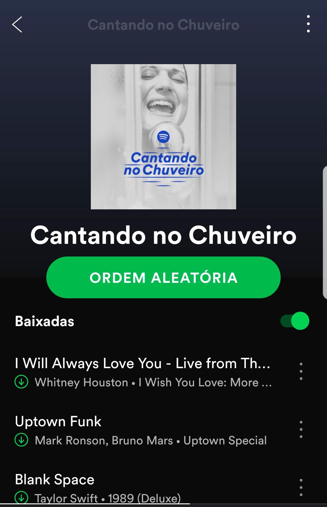Playlist cantando no chuveiro