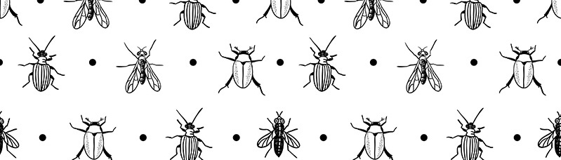 Estampa de insetos voltou com tudo na moda.