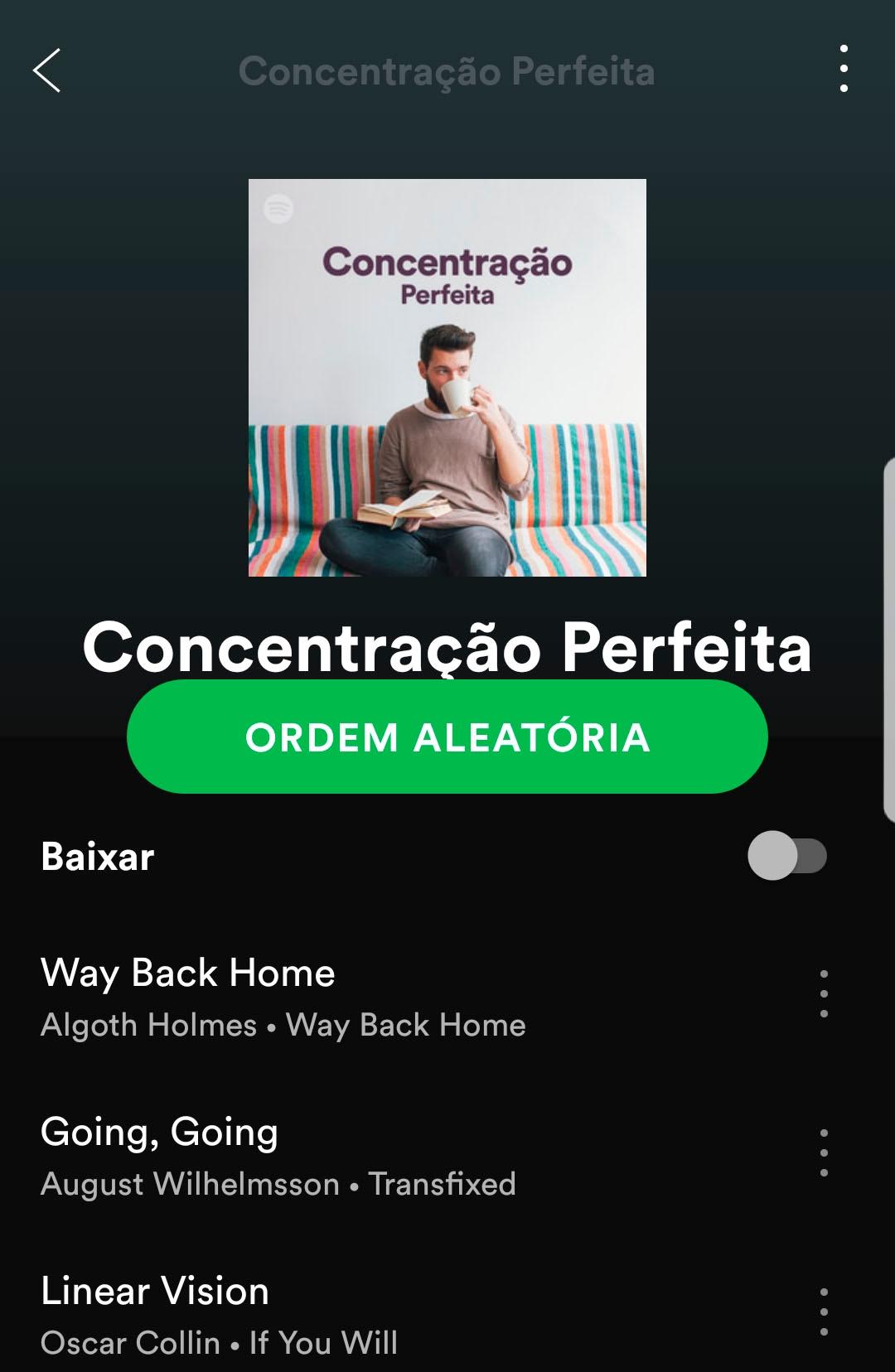 Playlist Concentração Perfeita