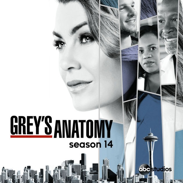 Grey's Anatomy temporada 14